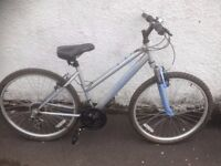 Apollo XC.26. Women's MTB. Fully serviced, fully safe and ready to go.