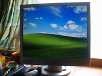 """HP 19"""" Computer Screens (Two Available)."""