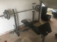 Weights and bench set (Olympic bar)