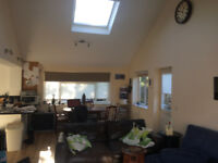 Great room in a lovely house in Surrey Hills