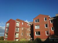 Large, light and quiet one bedroom flat. 5 min walk to hospital,10 mins to Amex. Allocated parking.