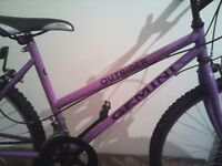 GEMINI OUTRIDER, LADIES MOUNTAIN BIKE,17 INCH FRAME,26 INCH WHEELS,18 GEARS,GOOD TYRES,G OOD TO GO.