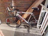 Schwinn Phocus 1600 Men's Road Bike (700c, 56 cm)