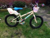 Children's apollo woodland bike