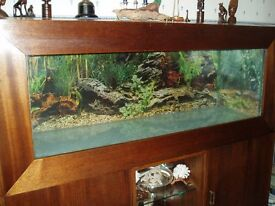 FISH TANK IN CABINET