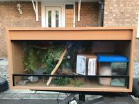 3ft Vivarium with Accessories in Great Condition