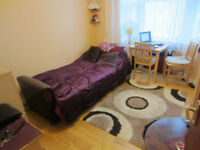 studio flat, separate kitchen, 5 mins to Turnpike Lane Station, available NOW