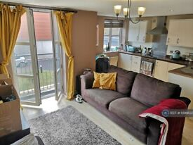 2 bedroom flat in Pasteur House, Nottingham, NG3 (2 bed) (#1099833)
