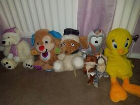 Toys and Teddies