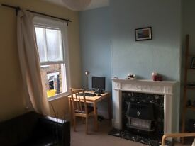 Beautiful and spacious one bedroom flat available for sublet