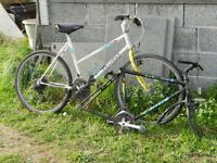 FREE Peugeot Adult Ladies Gents or Teenage Mountain Style Bike 18 gears + Carerra Gents frame