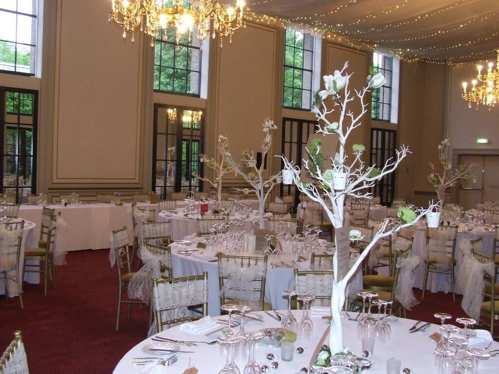 10 X White Manzanita trees (perfect wedding / party centrepiece) - decorations included!