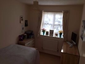 Single room to rent in Horley High Street - Quite Location - Close to Train Station