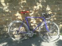 "Raleigh Reynolds 501 Road Bike Racer 23.5"" - 700c - Fixie Single Speed"