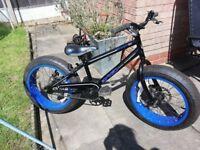 Boys avigo monster bike