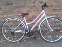 New Falcon Swift Ladies Hybrid Women's Bike - Silver/Pink - RRP £249