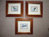 Set of 3 pictures in Attractive Wide Wooden Frames and Mounts