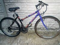 ADULT LADIES PEUGEOT MOUNTAIN BIKE--RIDES WELL--£35