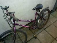 Bikes ladies and girls