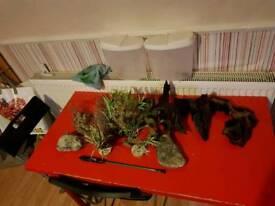 Bogwood and fake plants