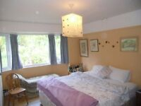 SWANSEA CENTRAL LOCATION-King bed, spacious room with cupboard space.For professional or student