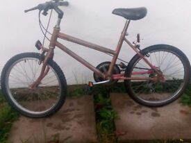 Bicycle......CHEAP