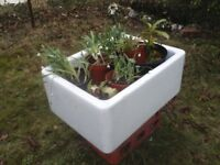 Butler's Sink - Ideal Garden Planter