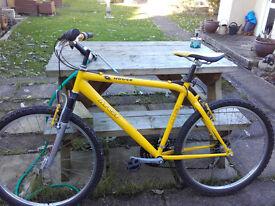 Lovely mens MGI bike
