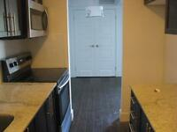 Stunning Renovated Condo Style Renovated 2 Bedroom Apt Suite
