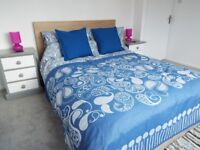 SPACIOUS DOUBLE ROOM FOR SINGLE OCCUPANCY IN A BEAUTIFULLY RENOVATED HOUSE IN SOUTHBOURNE