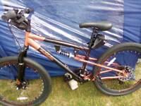 Brand new ladys bike