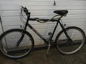 Raleigh BSA West coast bicycle black Bicycle