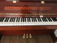 Immaculate Steinmayer Piano