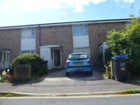 Hatfield: 2 double bedrooms to Let