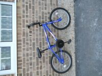 Teenage Bike For Sale