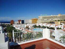 One Bedroom Apartment Tenerife