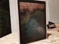 Apple iPad Pro 12.9 inch Wifi and Cellular -2nd Latest Generation Apple Warranty