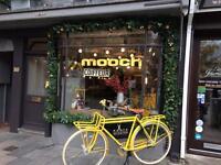 General assistant/ Reception at Mooch hair salon Brighton