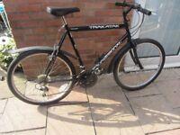 mens professional mountain bike 18 speed gears 22inch frame £45.00