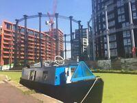 33 ft narrowboat for sale