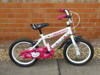 Fantastic Kids Bike!