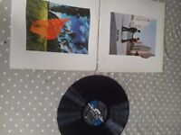 Pink Floyd Shine On You Crazy Diamond - SHVL 814A