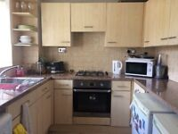 Immaculate Two Bedroom House - Highly Recommended