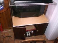 3 foot fish tank / 140 lts with aquarium stand Tropical / marine