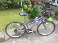 LADIES MOUNTAIN BIKE 18 GEARS TYRES ARE STILL LIKE NEW JUST BEEN SERVICED