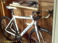 carrera vituoso road bike only used once new conition.