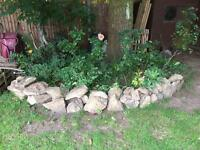 Stone rockery available to pick up in Sutton