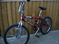 bmx bike full size quality bike