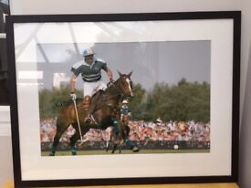Adolfo Cambiaso the worlds best polo player