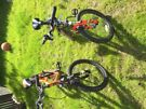 "20"" Boys Bicycles x 2"